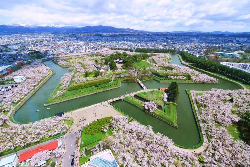 絶景探しの旅 - 0200  「五稜郭」 北の大地に浮き出す満開の桜の星 (北海道 函館市)