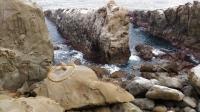 鵜戸神宮崖