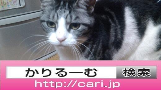 moblog_2da4c7e4.jpg