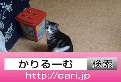 moblog_438ff0ec.jpg