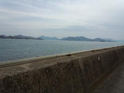 photo_derosa_fukuyama_mukoujima_62_2017_0415.jpg
