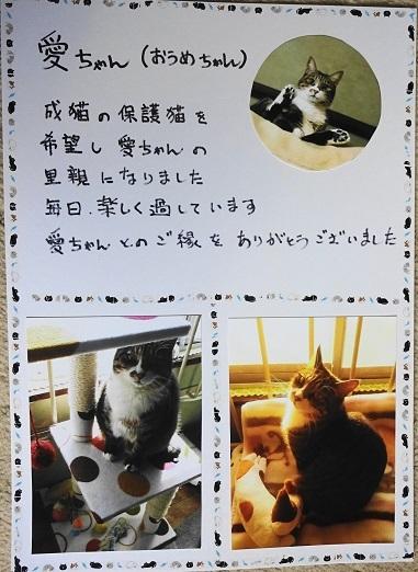 愛ちゃん(おうめ)