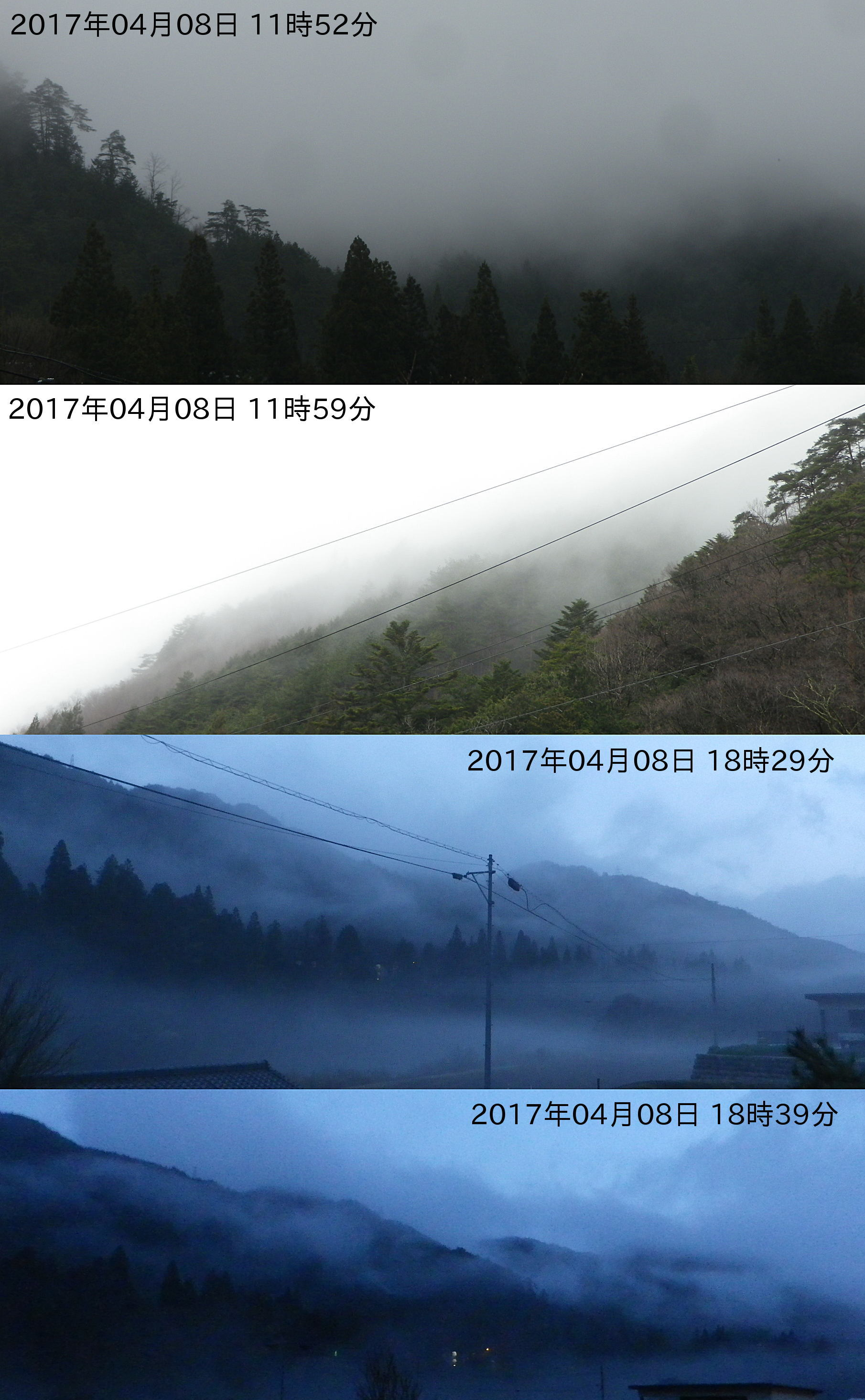 170408_dense_fog.jpg