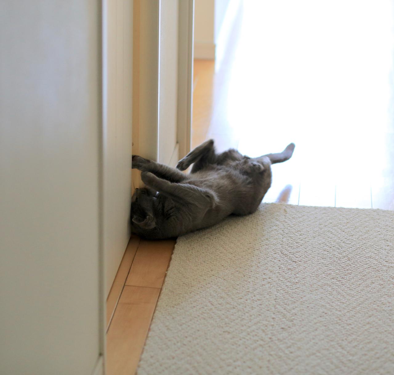 寝転がる3
