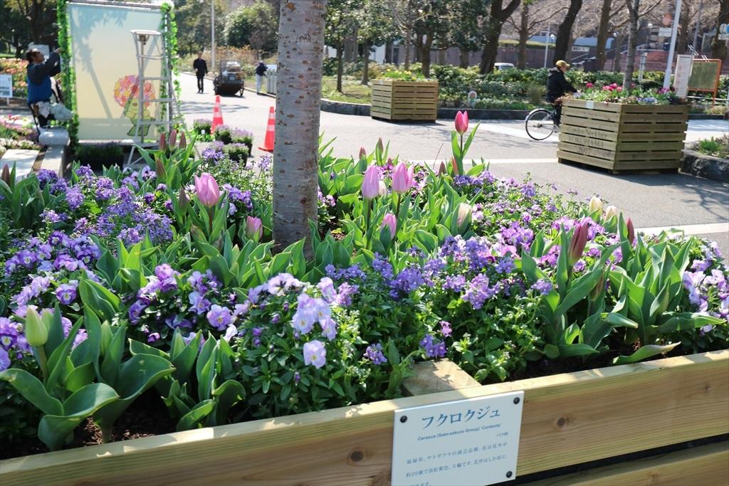 Garden Necklace YOKOHAMA 2017_6
