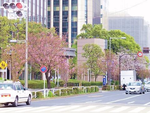 jolunchogawa03.jpg
