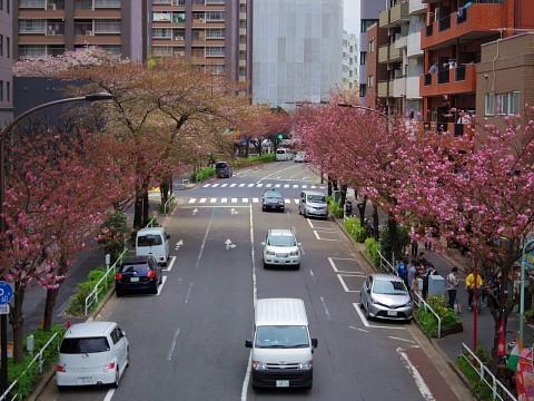jolunchogawa19.jpg