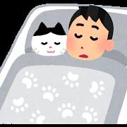 ネコ(寝る