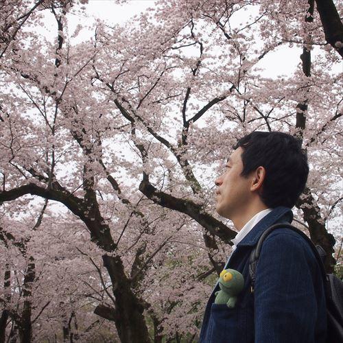 ゆうブログケロブログお花見と花まつり (20)