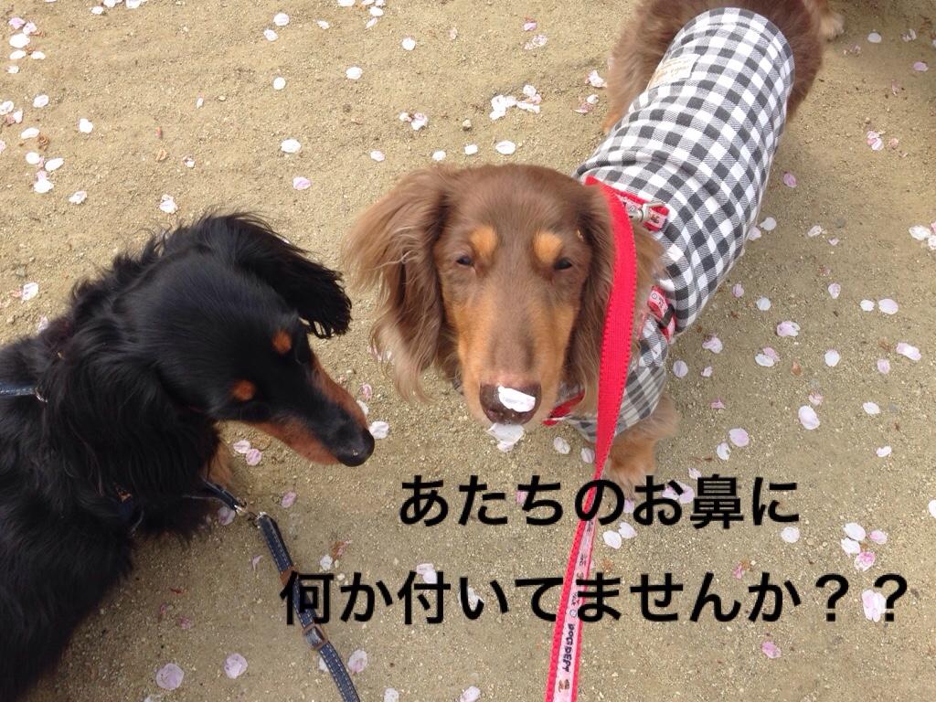fc2blog_20170417021330ebb.jpg