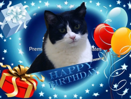 happy_birthday_events_powerpoint_templates_and_powerpoint_backgrounds_0511_title.jpg