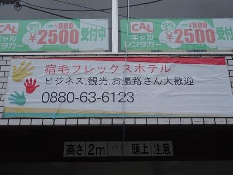 DSC08257.jpg