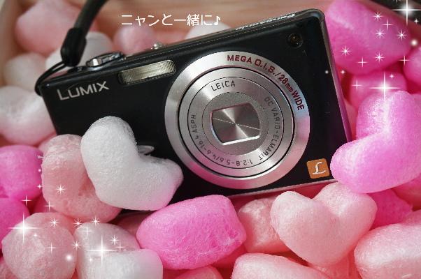 lumix304.png