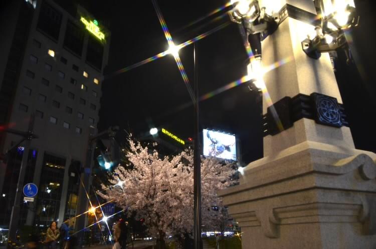 170409hiroshimaekimae014.jpg