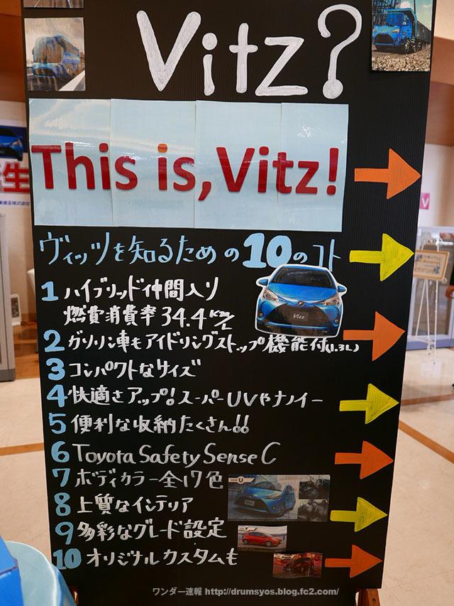 VITZHYBRID18.jpg