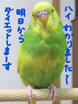 InkedIMG_2168_LI.jpg