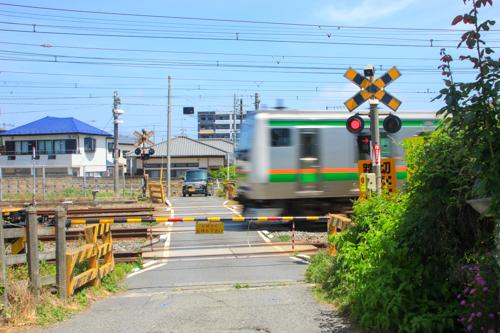 IMG_8265-2.jpg