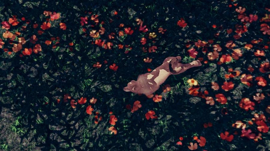 Screenshot-fc-BP1318a.jpg