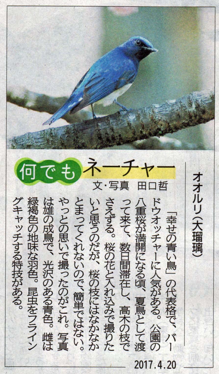 Newspaper_170420.jpg