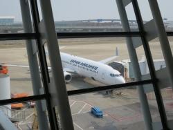JAL 機内食 中国線