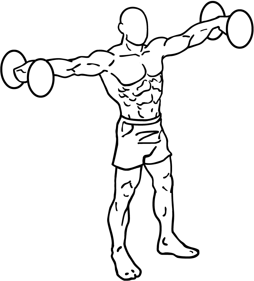Dumbbell-lateral-raises-1_20170408110941c0e.png
