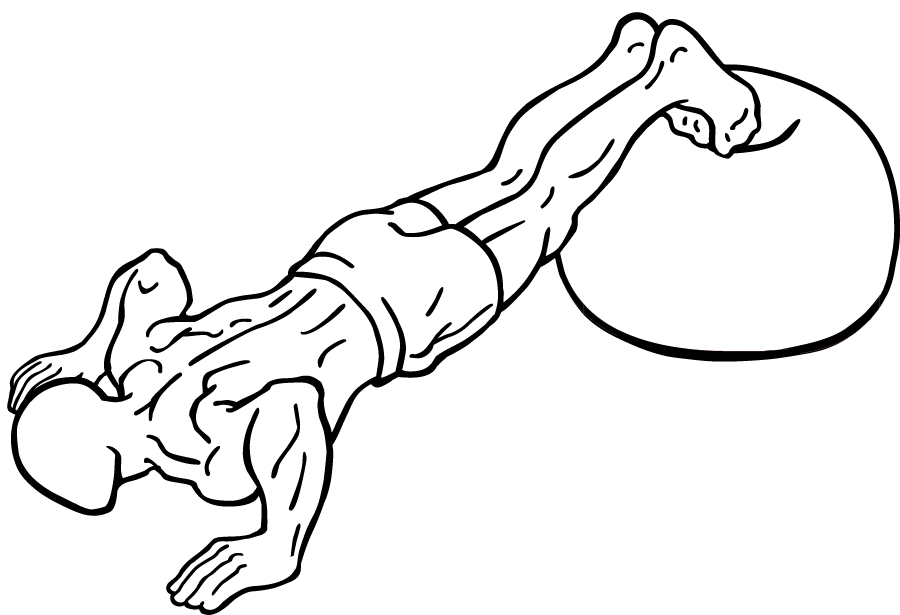 Push-up-with-feet-on-an-exercise-ball-2_20170212073629800.png