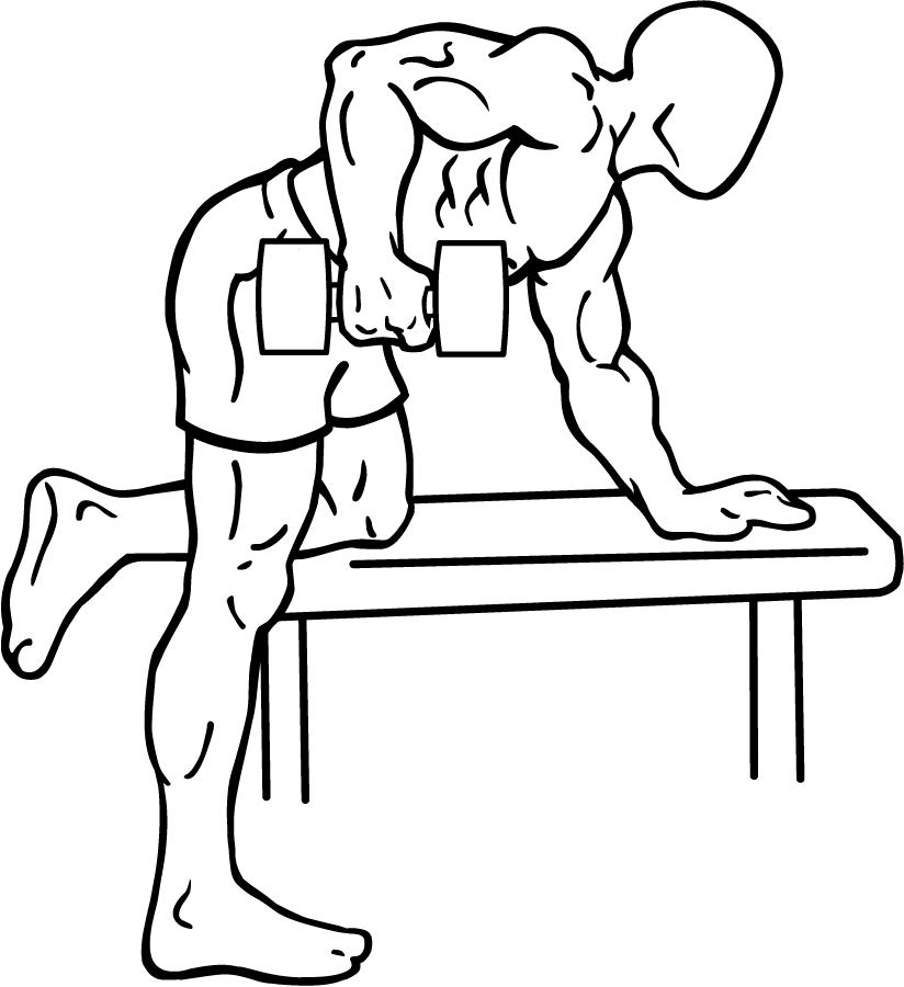 Rear-deltoid-row-1.png