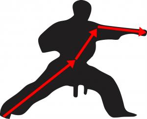 karate-312471_960_720_2017031420060624e.png