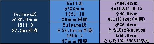 yuipapa1511-3.jpg