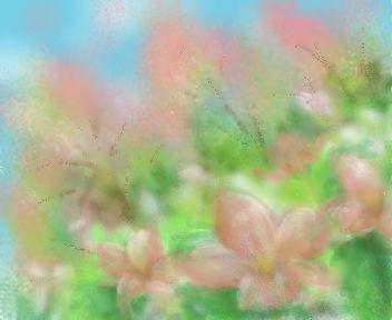 桜の木・・・のハズ