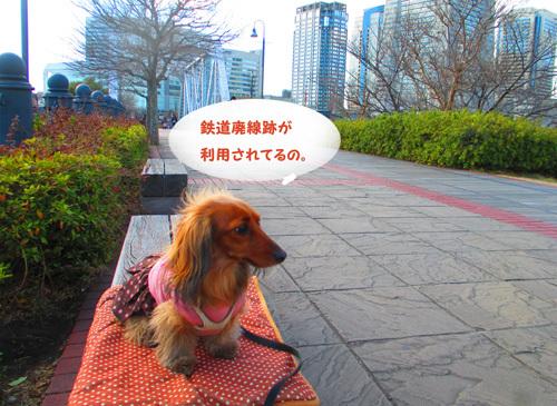2017-yokohama41.jpg