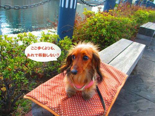 2017-yokohama44.jpg