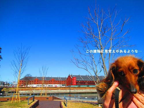 2017-yokohama6.jpg