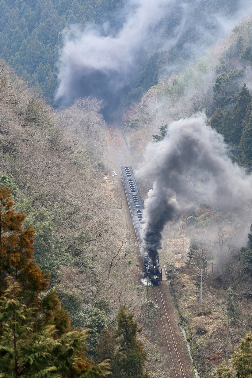 2017yamaguti08.jpg