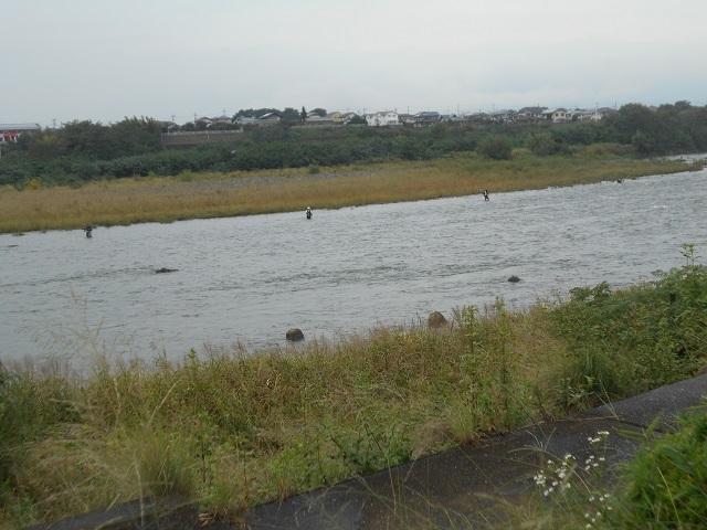 20180929大渡橋上流の釣りの様子DSCN5122.jpg
