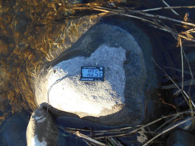 20181101水温DSCN5318