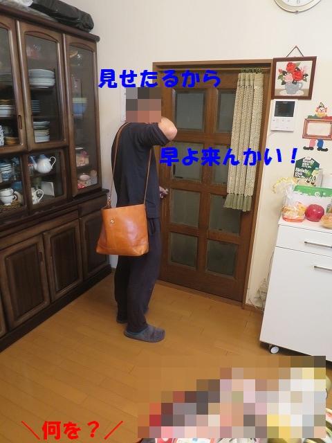DSC_0045_20170426163810e2d.jpg