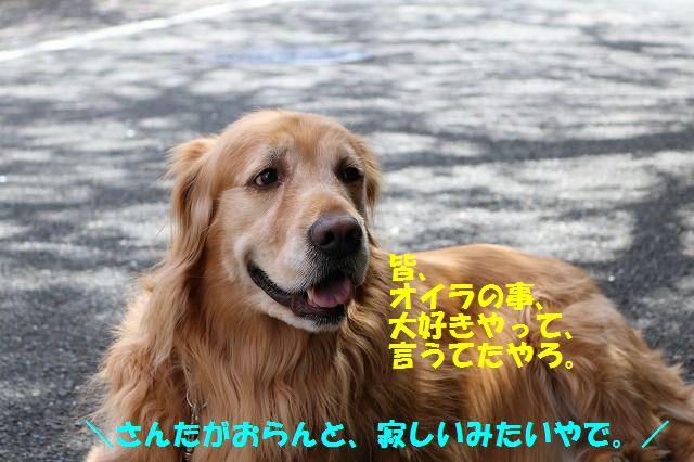 IMG_0574.jpg