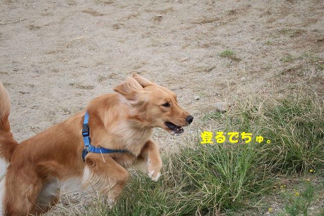 IMG_3915.jpg