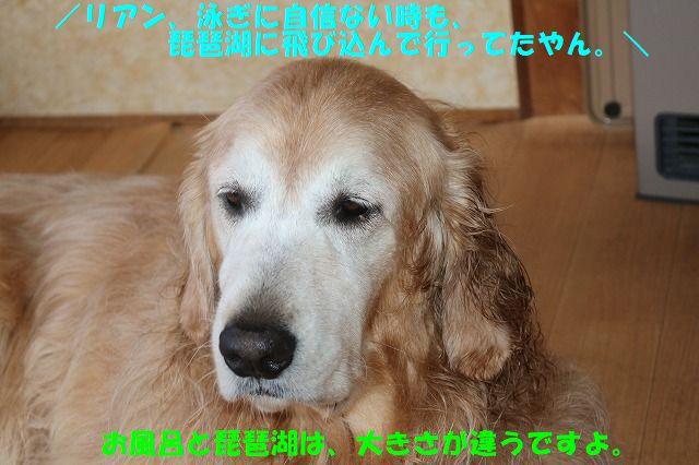 IMG_4286_20181030010148c91.jpg