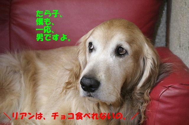 IMG_4444.jpg