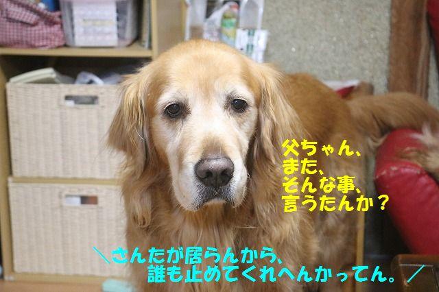 IMG_6406.jpg