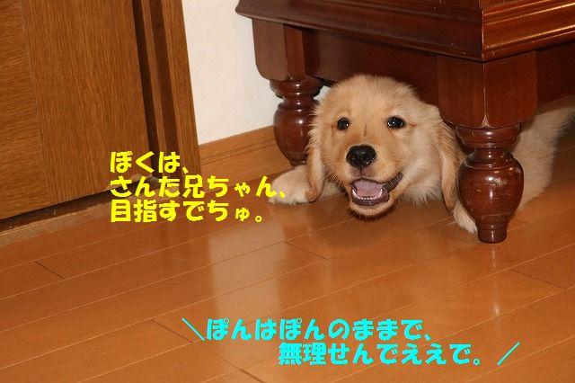 IMG_7512.jpg