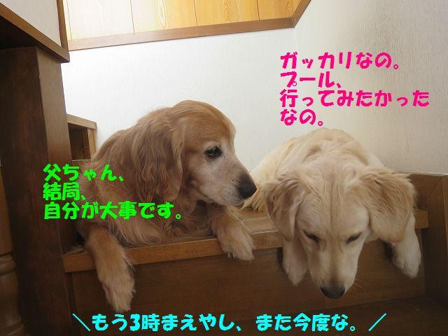 IMG_9339.jpg