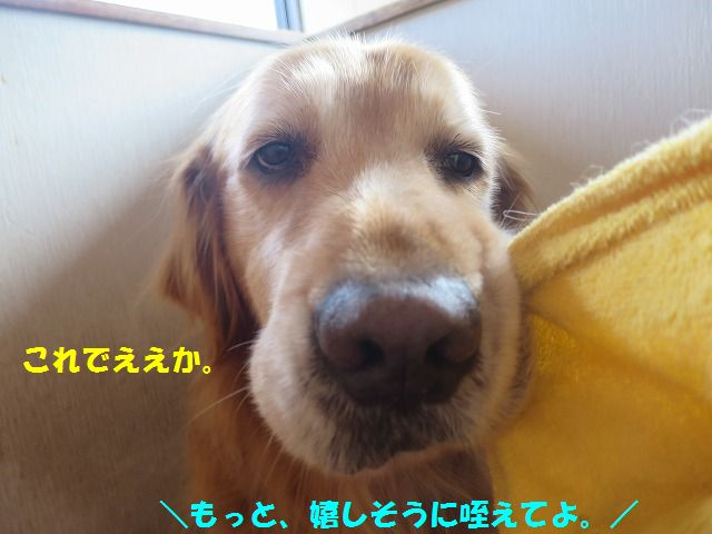 IMG_9659.jpg