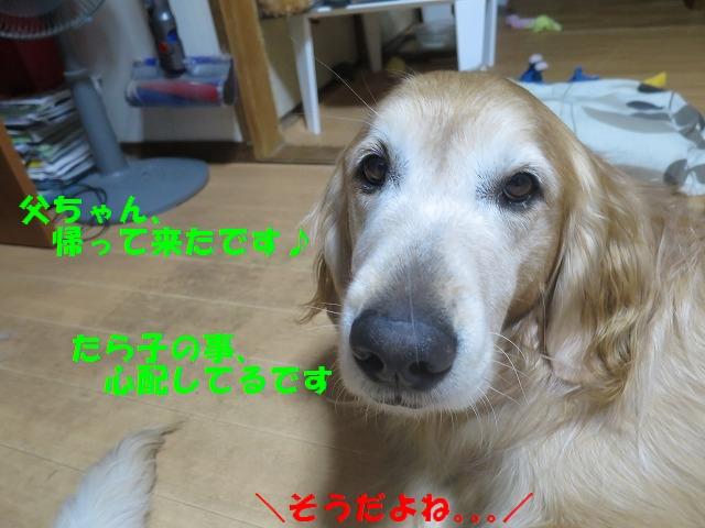 IMG_9739.jpg