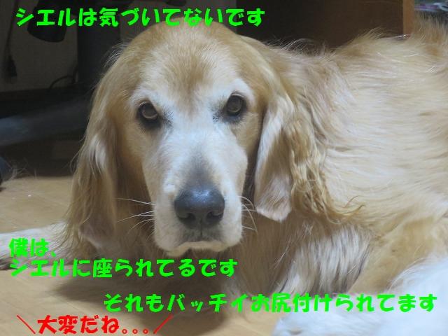 IMG_9770.jpg