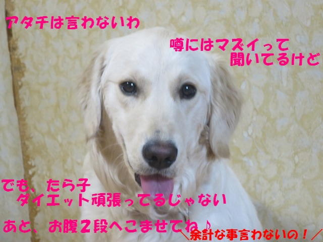 IMG_9779_20170308225510c7b.jpg
