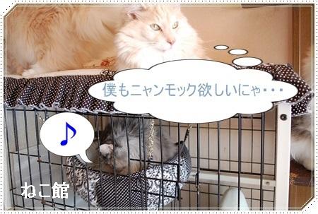 blog4_20170305152211fc0.jpg