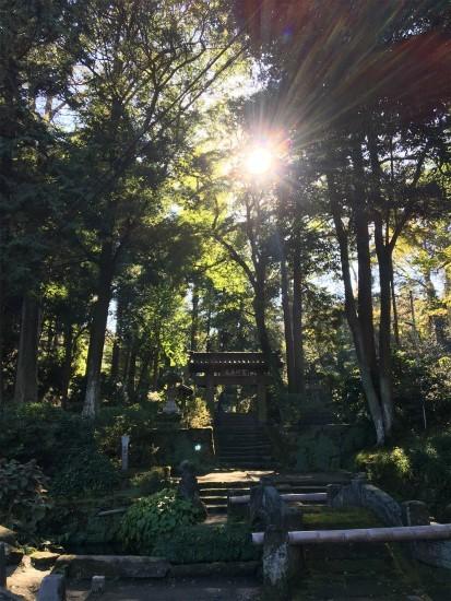 20181029鎌倉 浄智寺